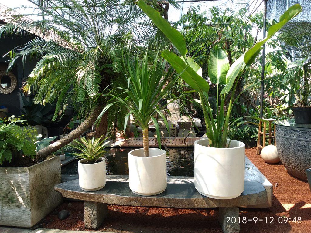 pot-tanaman-terrazzo